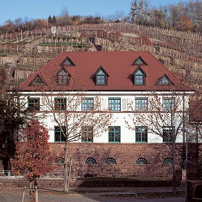 Staatsweingut Karlsruhe-Durlach | Edle Weine vom Durlacher Turmberg. Foto: pm