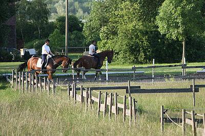 """Reitanlage des Reitervereins Durlach im Gewann """"Lenzenhub"""". Foto: cg"""