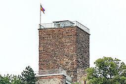 Regenbogenflagge auf dem Turmberg. Foto: cg