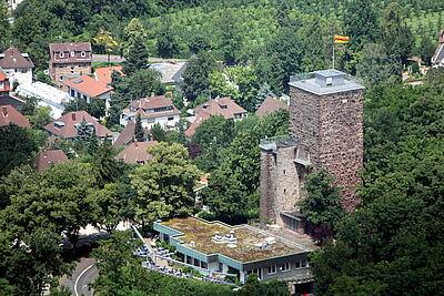 Turmberg. Foto: cg