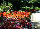 Schlossgarten Durlach. Foto: cg