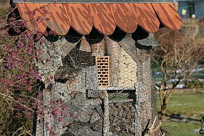 Kleingärten tragen zur biologischen Vielfalt bei. Foto: cg