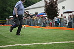 Pudelrennen auf der Vereinsanlage