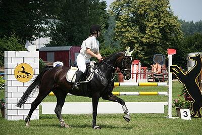 Turnier des Reitervereins Durlach. Foto: cg