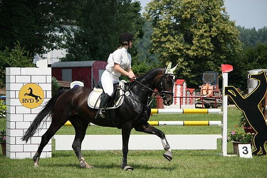 26 Durlacher Reitturnier - Vom 25. bis 27. Juni fand mit Rekordbeteiligung das diesjährige Turnier des Reitervereins Durlach 1908 e.V. statt. (31 Fotos)