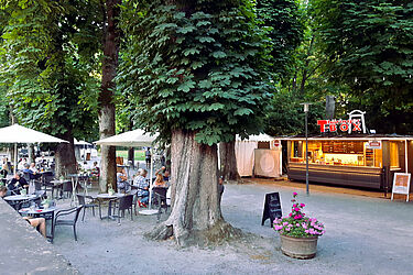 Sommer im Schlossgarten. Foto: cg