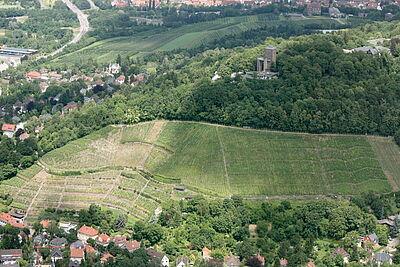 Der Turmberg liegt im Grenzbereich vom Kraichgau zum Schwarzwald. Foto: cg