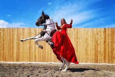 Spektakuläre Pferdeshow Horses & Heroes gastiert beim Reiterverein Durlach. Foto: pm