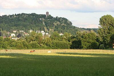 Lenzenhub mit Blick auf Turmberg. Foto: cg