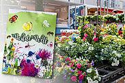 """Die Samenmischung """"Wilde Welt"""" wird auf dem Wochenmarkt in Durlach verteilt. Fotos: pm/cg"""