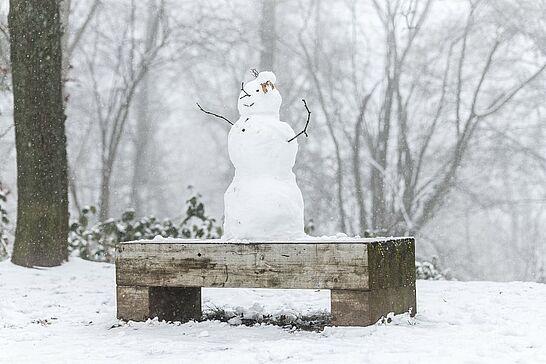17 Schneemänner auf dem Turmberg - Winterwonderland auf dem Turmberg: Beim Spaziergang sind uns am Sonntag allerlei Schneemänner begegnet. (34 Fotos)