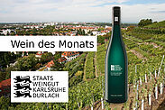 Wein des Monats beim Staatsweingut im Angebot: 2019 Scheurebe *** trocken. Grafik: pm