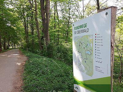 Beliebtes Ziel: der Oberwald. Aber auch hier hat der Schutz des Waldes Vorrang vor Grillvergnügen. Foto: cg