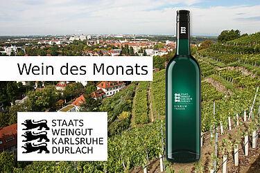 """Wein des Monats beim Staatsweingut im Angebot: 2020 Vinæum """"118"""" trocken. Grafik: pm"""