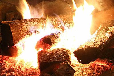 Stadt bietet komfortable Online-Bestellmöglichkeit für Brennholz. Foto: cg