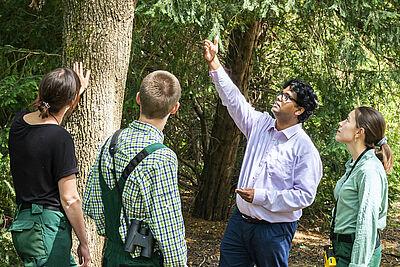"""Das """"GrüneLunge""""-Team um Dr. Somidh Saha vom Intstitut für Technikfolgenabschätzung und Systemanalyse des KIT untersucht Karlsruher Stadtbäume. Foto: Anastasiya Sultanova / KIT"""