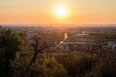 Durlach Schaffung neuer Strauch- und Baumbestände könne das Mikroklima insbesondere in der Durlacher Altstadt verbessert werden. Foto: cg