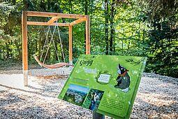 """Walderlebnisweg """"WaldWelt"""". Foto: cg"""