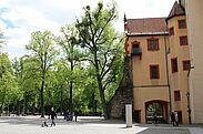 Pfinzgaumuseum in der Karlsburg. Foto: cg