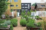 Ein Beispiel für Urban Gardening auf dem alten Schlachthof. Foto: cg