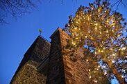 Christbaum auf dem Turmberg. Foto: cg
