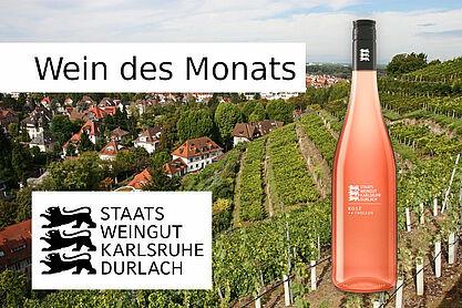 Wein des Monats: 2019 Rosé ** trocken. Grafik: cg