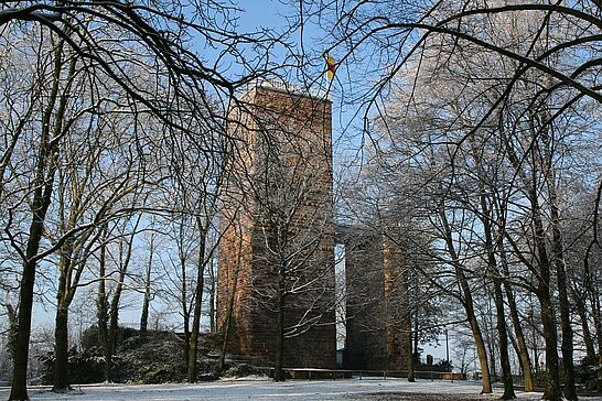 18 Sonntagmorgen auf dem Turmberg - Sonnenschein und Eis konnten Sparziergänger und Sportler am Sonntag auf dem Turmberg genießen. (17 Fotos)