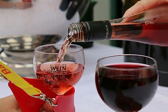 Mai - Die erste Weinwanderung in Durlach, welches zeitgleich aufblühte, Lauter Leise Töne in der Karlsburg und Handball beim Heimspiel V. (9 Galerien)