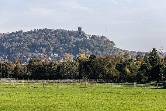 23 Gewann Lenzenhub: Herbstimpressionen - Herbst-Spaziergang entlang der Pfinz im Gewann Lenzenhub nördlich von Durlach. (23 Fotos)