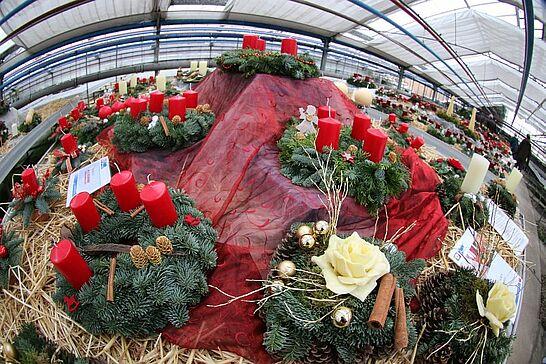 20 Adventmarkt der HWK Gärtnerei - Mit ihrem Adventsmarkt stimmt die Gärtnerei der HWK in Grötzingen auf den diesjährigen Advent ein. (45 Fotos)