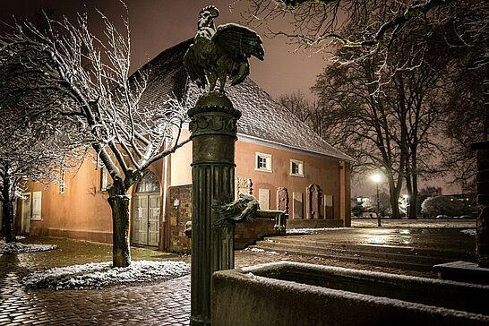 Februar - Fastnacht ohne Fastnacht und geschlossene Geschäte, dafür schöne Schnee-Spaziergänge und eine Baum-Pflanzaktion des KSC. (6 Galerien/1 Video)