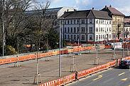 Neugepflanzte Linden auf dem Kriegsstraßen-Straßentunnel vor dem Nymphengarten. Foto: Müller-Gmelin / Stadt Karlsruhe