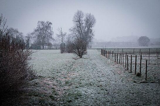 Februar - Der Fastnachtsumzug erwies sich wieder als Besuchermagnet, Durlacher.de war auf dem Turmberg unterwegs und mit einem ganzen Tisch bei der Premiere der Auemer Bühn vor Ort. (8 Galerien)
