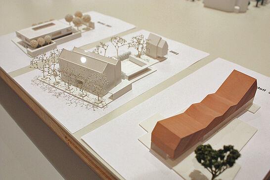 Januar - Die Narren vergaben schon vormittags Orden und der Pavillon der Friedrichschule wird durch einen Neubau ersetzt werden. (2 Galerien)