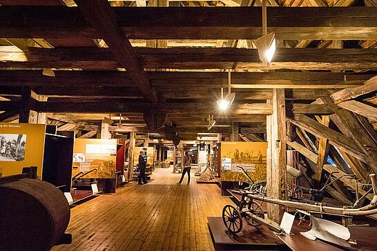 07   KAMUNA: Pfinzgaumuseum und Badisches Landesmuseum - Bei der Karlsruher Museumsnacht besuchten wir das Pfinzgaumuseum in der Durlacher Karlsburg und das Badische Landesmuseum im Karlsruher Schloss. (49 Fotos)
