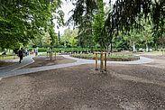 Das neue Waldgrabfeld auf dem Bergfriedhof Durlach. Foto: cg