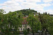 Blick aus der Pfinzgaumuseum hinüber zum Durlacher Hausberg. Foto: cg